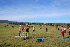 Wie kann ein Tag schöner beginnen - Fit für den Ritt auf der Stutenweide mit Jana Tumovec